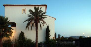 Villa - palm tree